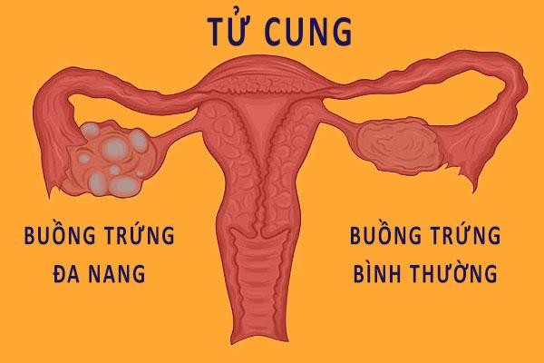 Tác dụng của thuốc tránh thai
