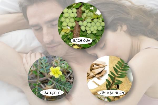 Sâm Alipas Platinum có chứa nhiều thảo dược quý