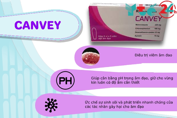 Công dụng của Canvey
