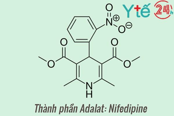 Thành phần của thuốc Adalat: Nifedipine