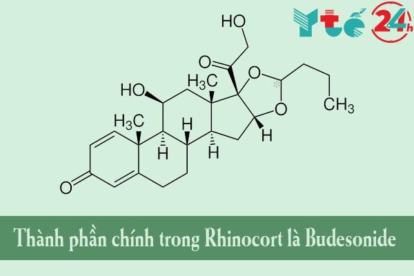Thành phần của Rhinocort