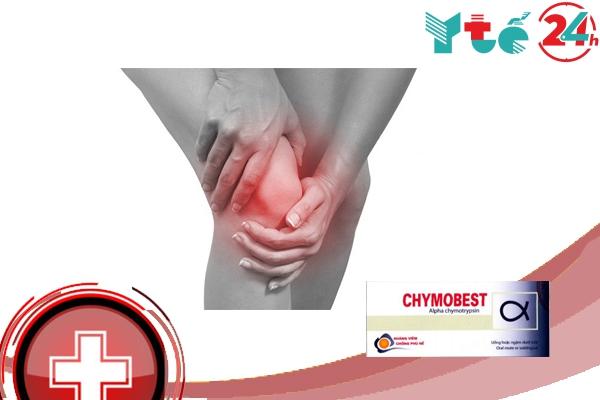 Lưu ý khi sử dụng Chymobest