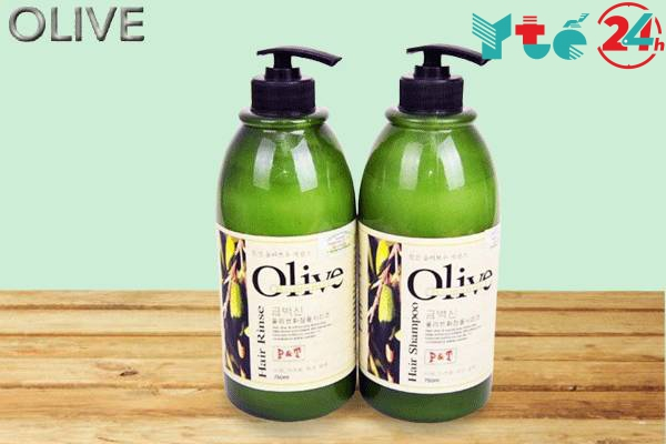 Các sản phẩm dầu gội Olive