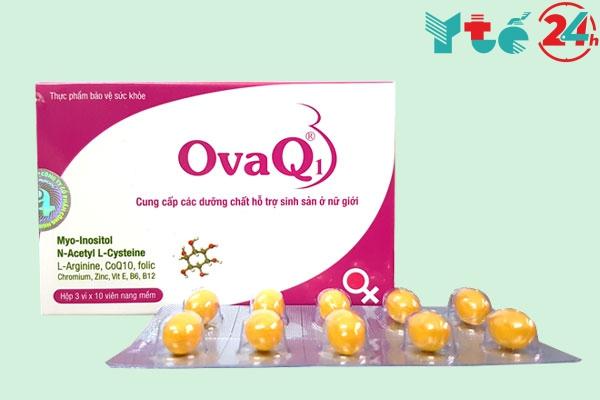 OvaQ1 là gì?