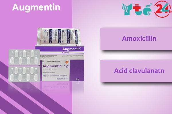 Amoxicillin và Acid Clavulanic là 2 thành phần chính của thuốc