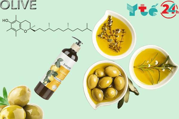 Công dụng của dầu gội Olive