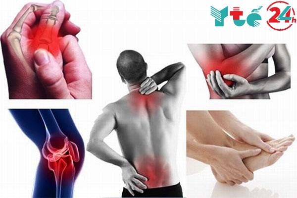 Công dụng của xương khớp MH