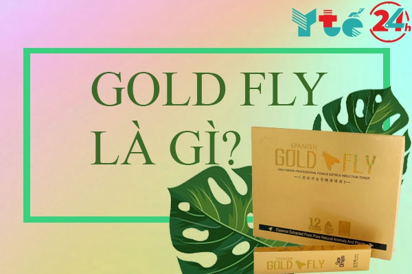 Gold Fly là gì?