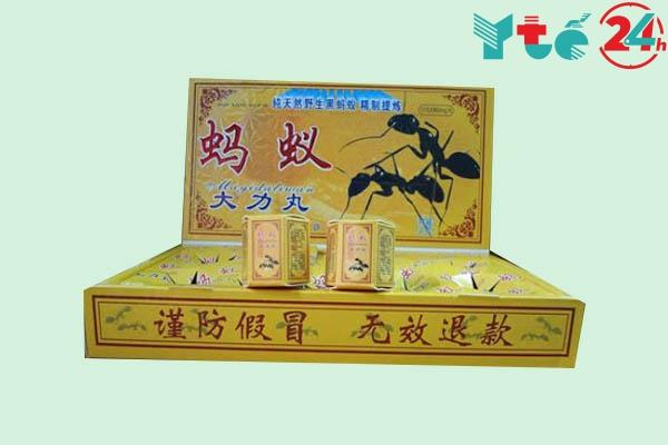 Thuốc cường dương con kiến đen Tây Tạng top thuốc tốt nhất của Thái Lan