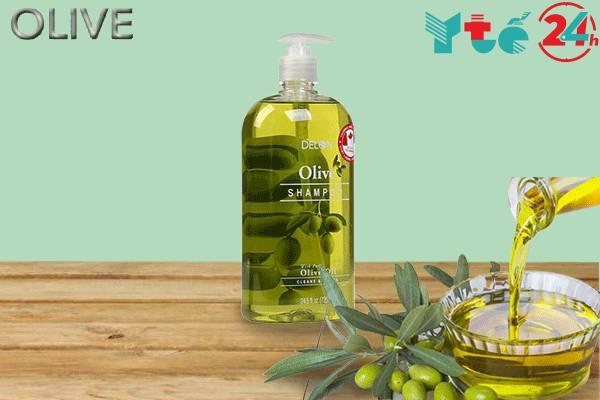 Thông tin dầu gội Olive