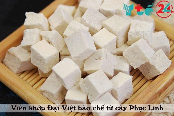 Phục Linh là cây thuốc quý có trong Viên khớp Đại Việt
