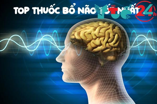 Top thuốc bổ não tốt nhất