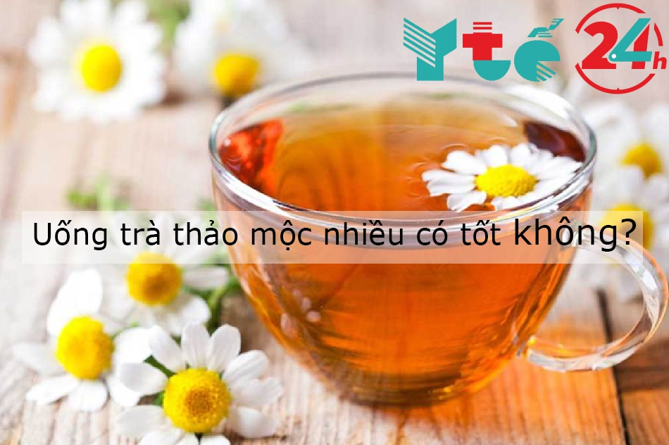 Uống nhiều trà thảo mộc có tốt không?
