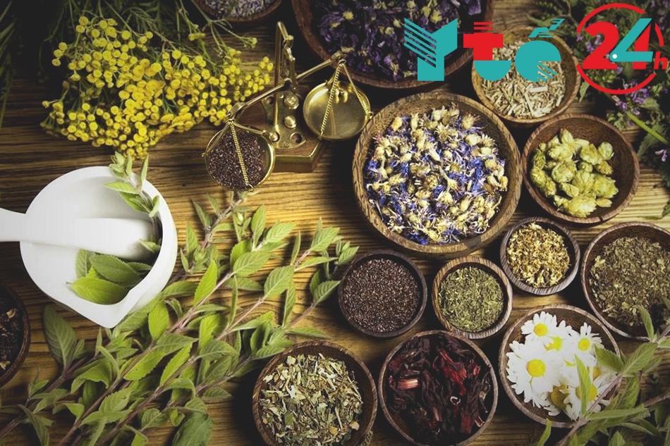Thành phần trà thảo mộc