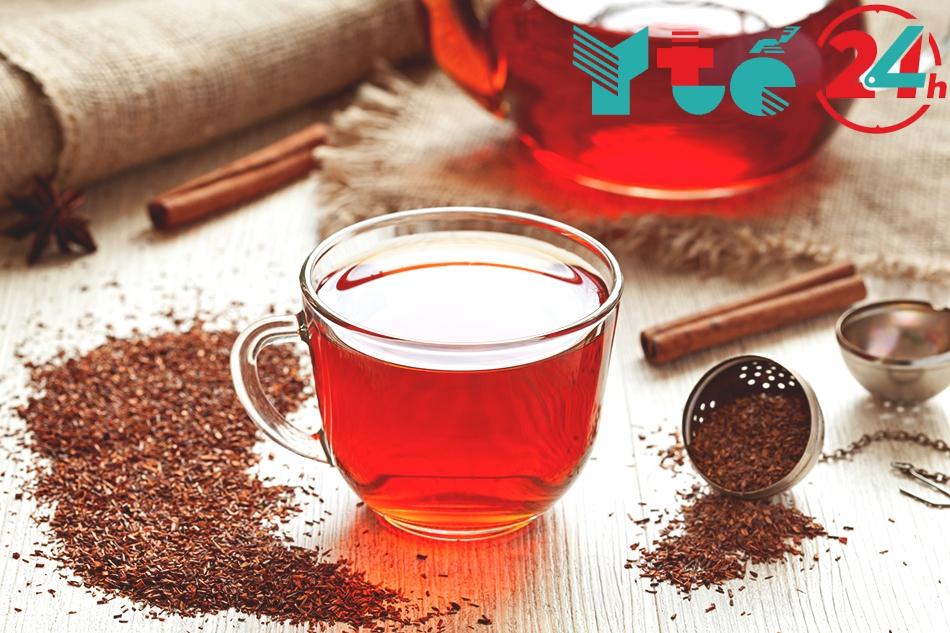 Hồng trà Nam Phi (Rooibos Tea)