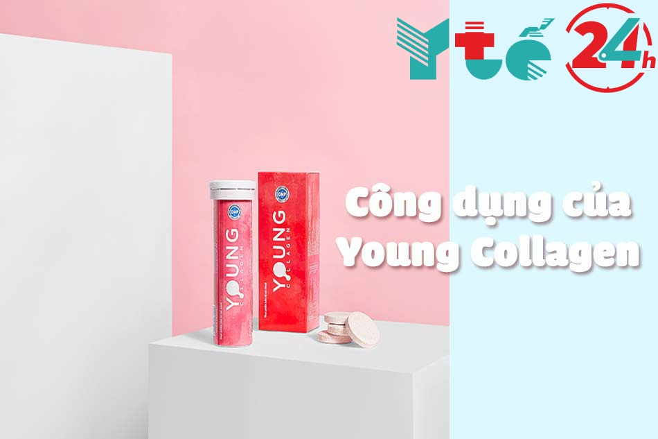 Công dụng của Young Collagen