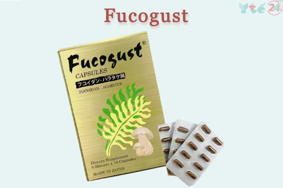 Fucogust là sản phẩm có hàm lượng Fucoidan cao nhất